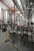 Brewing operations