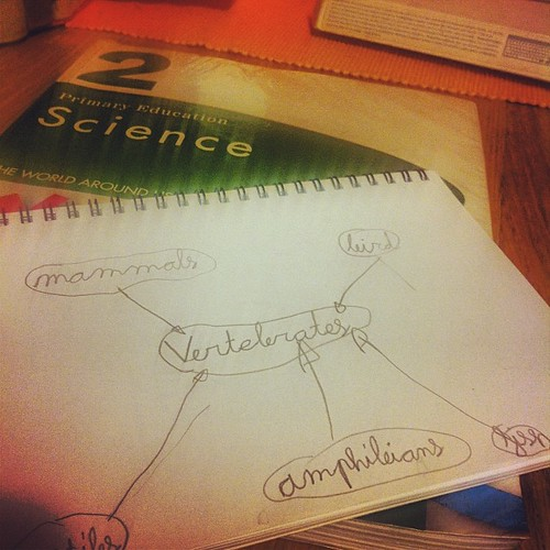 Studying Science. Aitana's first #mindmap