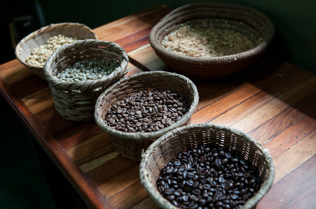 Finca Rosa Blanca Coffee Experience-25