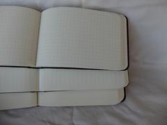 paperblanksreporter05