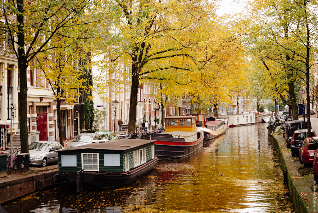 Rainy Fall Day Wallpaper Colours Of Autumn In Amsterdam Amsterdamming