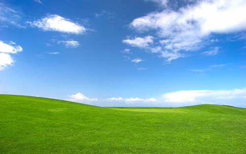 USDA Conservationist Recognizes Iconic Microsoft \u201cWallpaper\u201d from