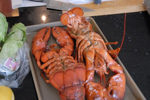 Lobsters lying in state