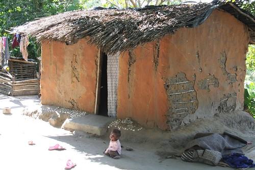 Africa 2008 724