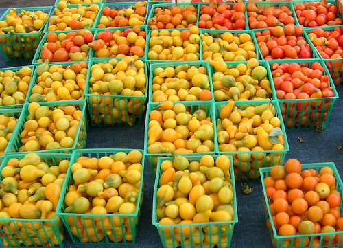 Grape Tomatoes at the Farmers Market por Jill Clardy