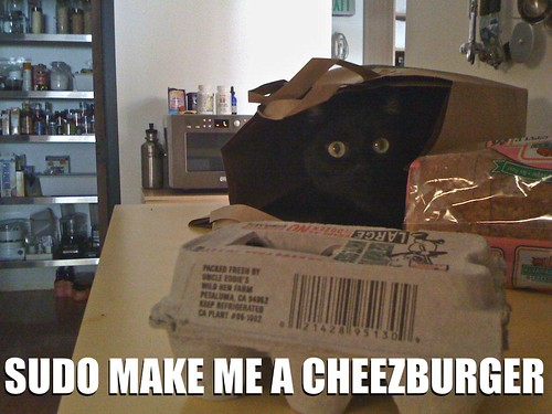SUDO MAKE ME A CHEEZBURGER