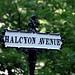 Halcyon Avenue / Mount Auburn Cemetery