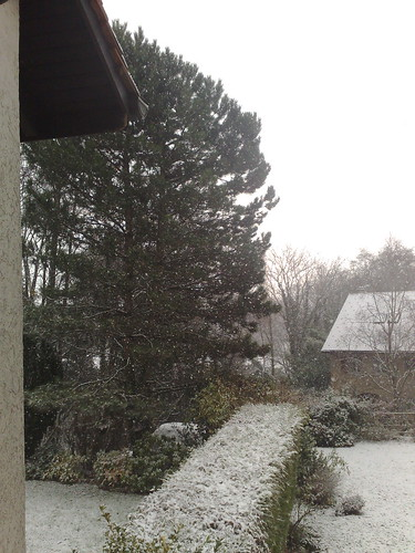 The snow is finally falling