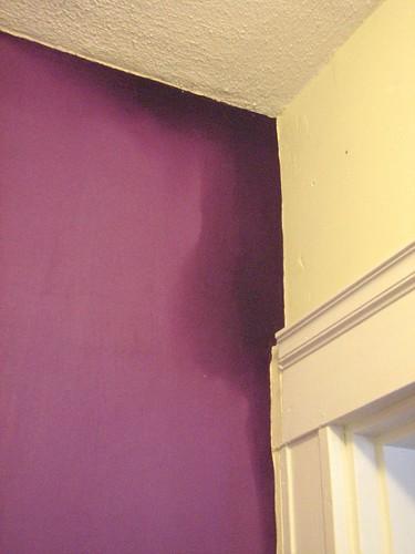 Entry5 Silver Linings Purple
