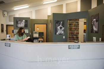NWVS Pet Gallery by H2Meyer Photography