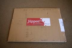 Shipment from Ponoko - Yippee!
