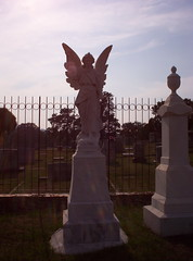 Wolfe's Angel