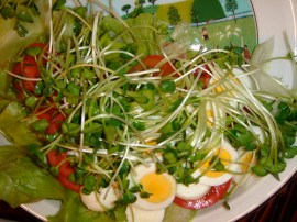 easy salad with hard-boiled eggs