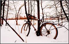 090221_winter bike