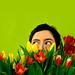 Week 44 - Spring is in the air