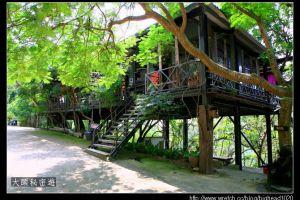 [台南]新化 五號樹屋