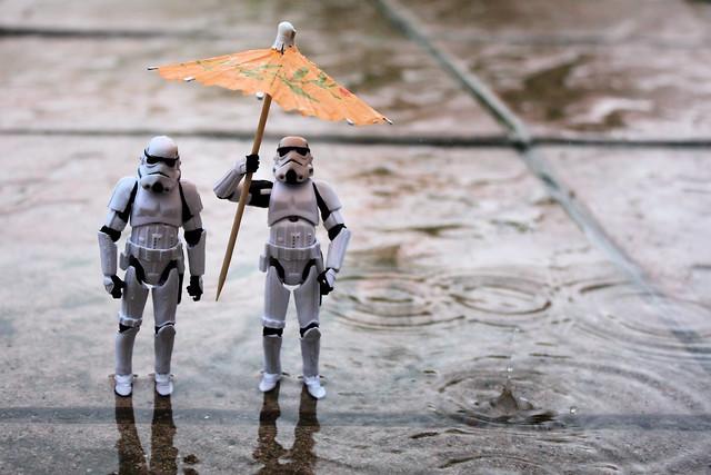 Trooping in the rain