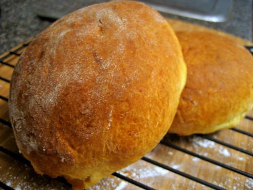 brioche, fresh from the oven