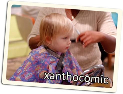 xanthocomic