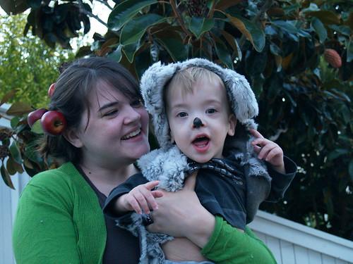 Koala Bear Halloween