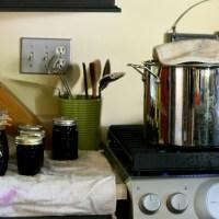 Natural Flu Treatment: The Healing Power of Elderberries + Recipe for Elderberry Elixir
