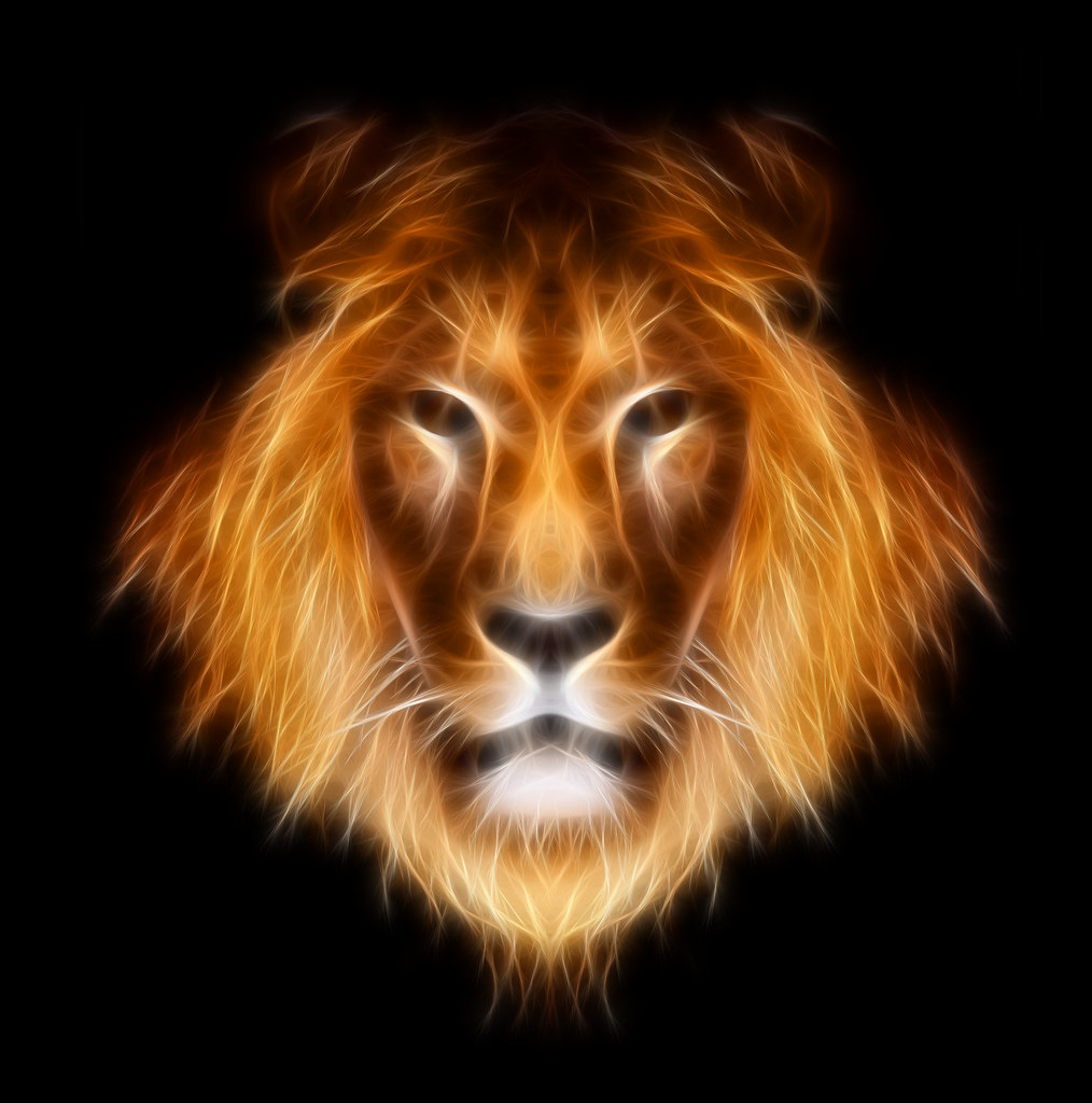 Lion Animal Wallpaper 3d 20 Superb Examples Of Animal Fractal Art