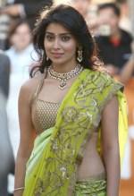 Shriya Saran Saree Hot