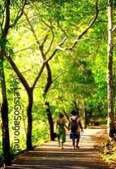 Camiguin Walkway