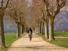 Cycling rural path