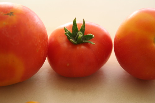 Tomaters