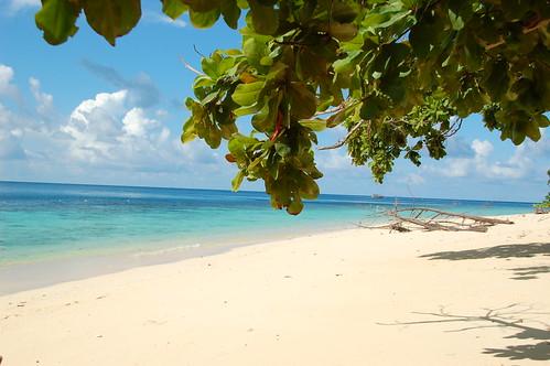 Sun Sea Sand plus leaves