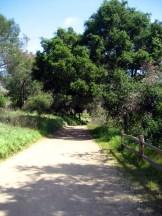 Santiago Oaks Regional Park