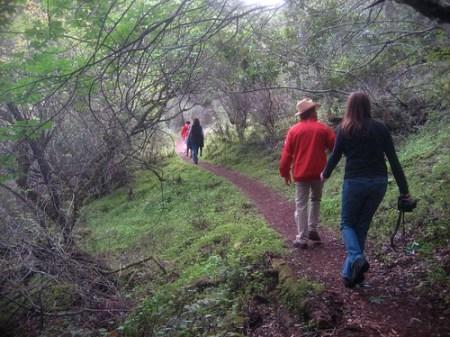 Hostel trail