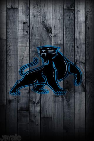 raaspenrasi: carolina panthers wallpaper