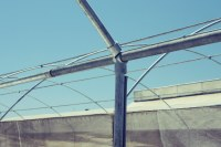 Building Large Commercial Greenhouses with Kee Klamp Fittings