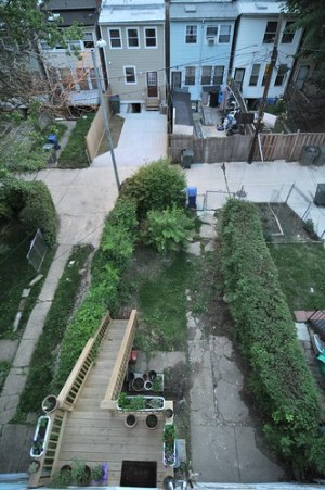Backyard and alley from above