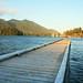 Tofino dock at sunset
