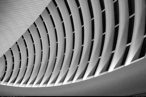Calatrava skeleton II