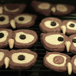 Night Owl Sugar Cookies