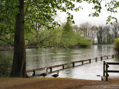 Alexandra Palace - Boating Lake #2