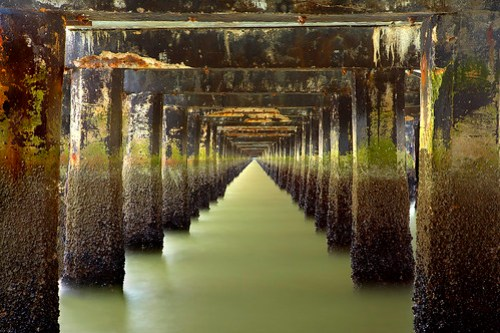 Under the Berkeley Pier