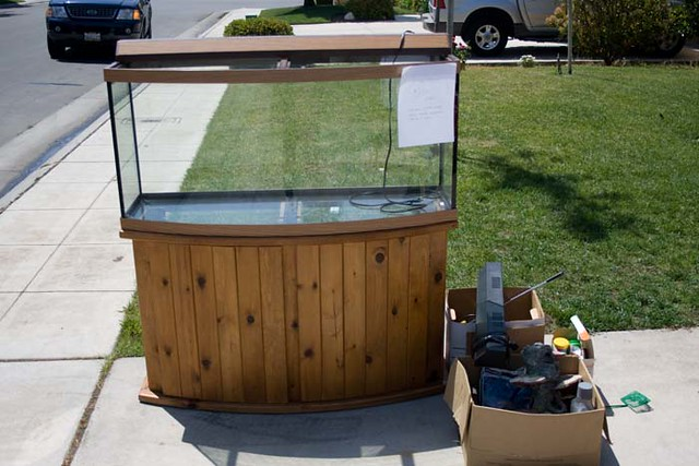 fish tank for sale   Flickr   Photo Sharing!