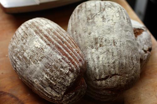swedish bread loaves