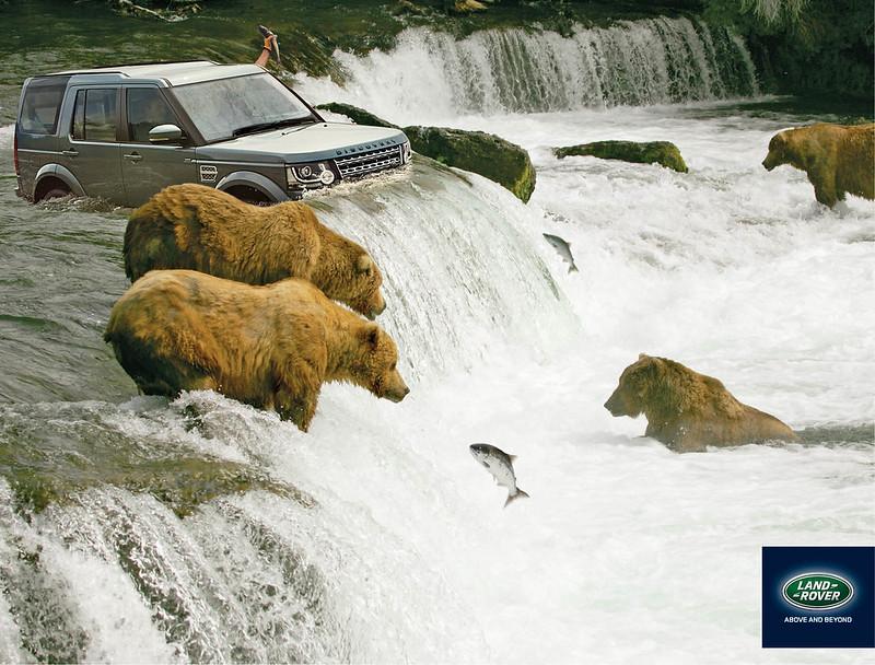Land Rover fish and bear
