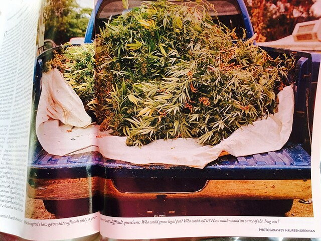 Truck full of Cannabis