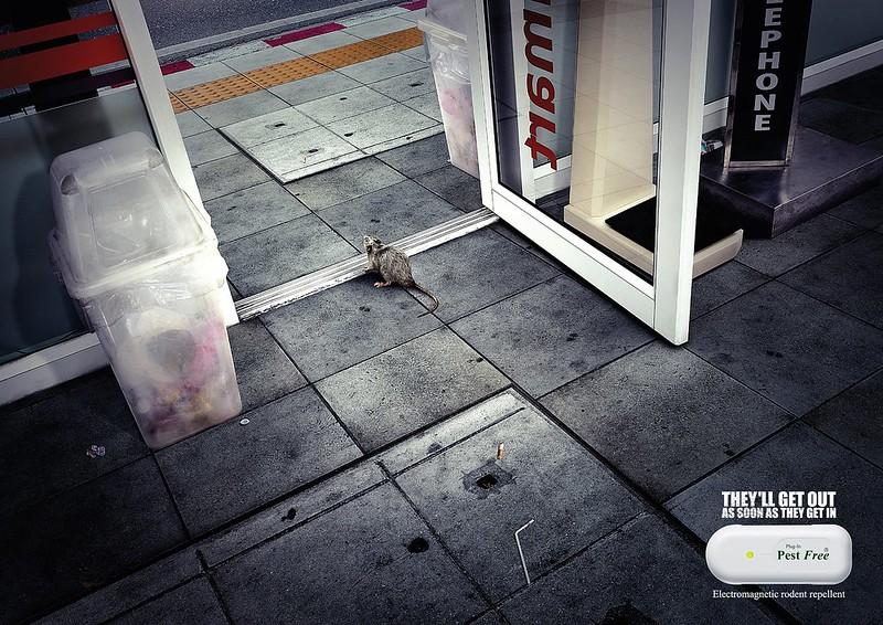 Pest Free minimart
