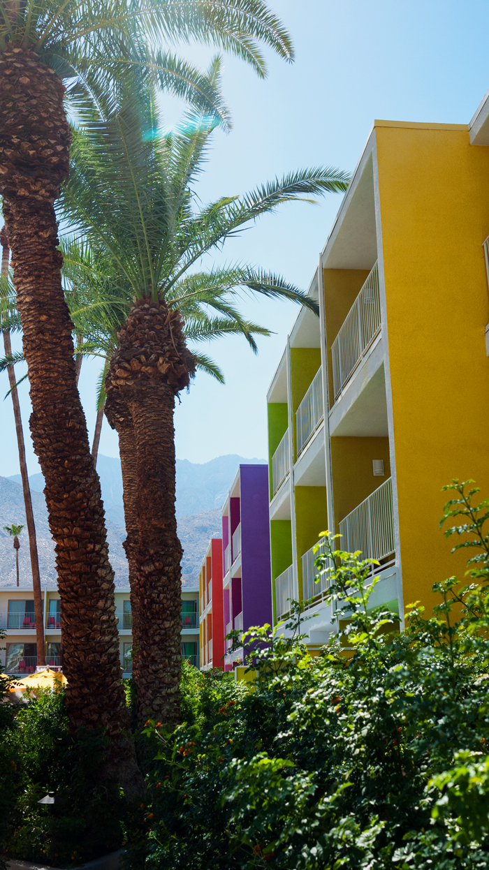 The Saguaro Palm Springs