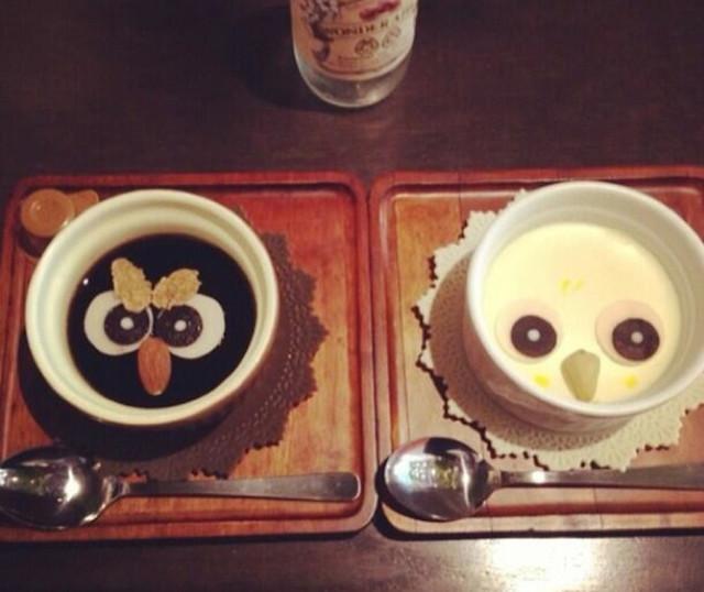 Owl-Cafe-3