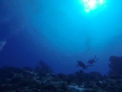 Best Diving Cozumel-21