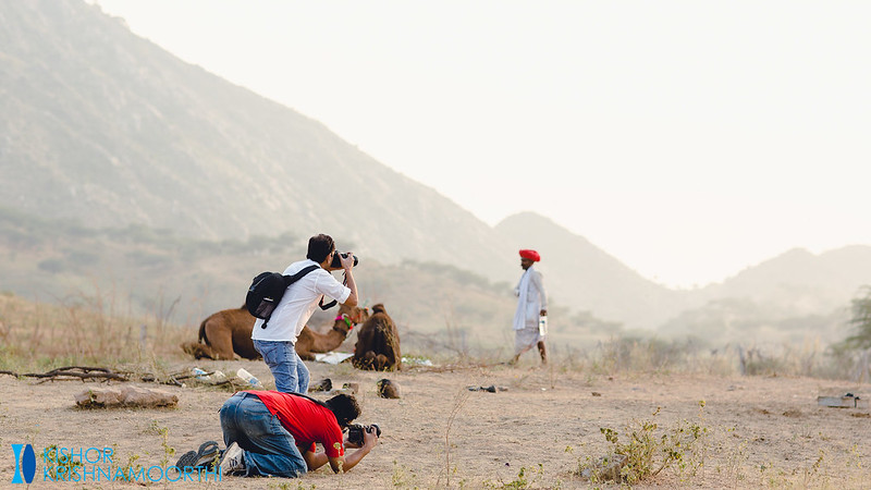 Photographers at Pushkar Mela 2013